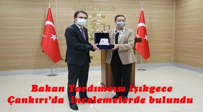 Bakan Yardımcısı Işıkgece Çankırı'da incelemelerde bulundu