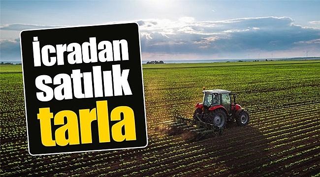 Çankırı/Çerkeş'de 3.743 m² tarım arazisi mahkemeden satılık