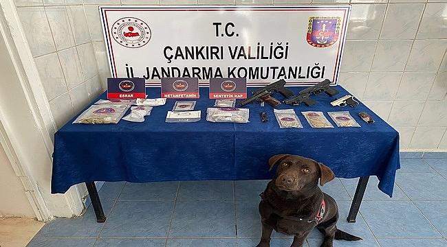 Çankırı'da uyuşturucu şebekesi çökertildi