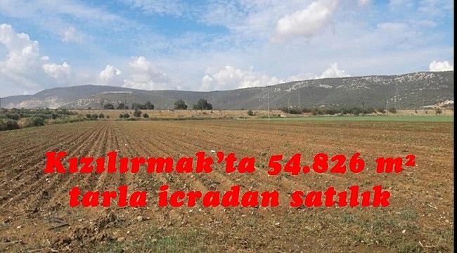 Kızılırmak'ta 54.826 m² tarla icradan satılık